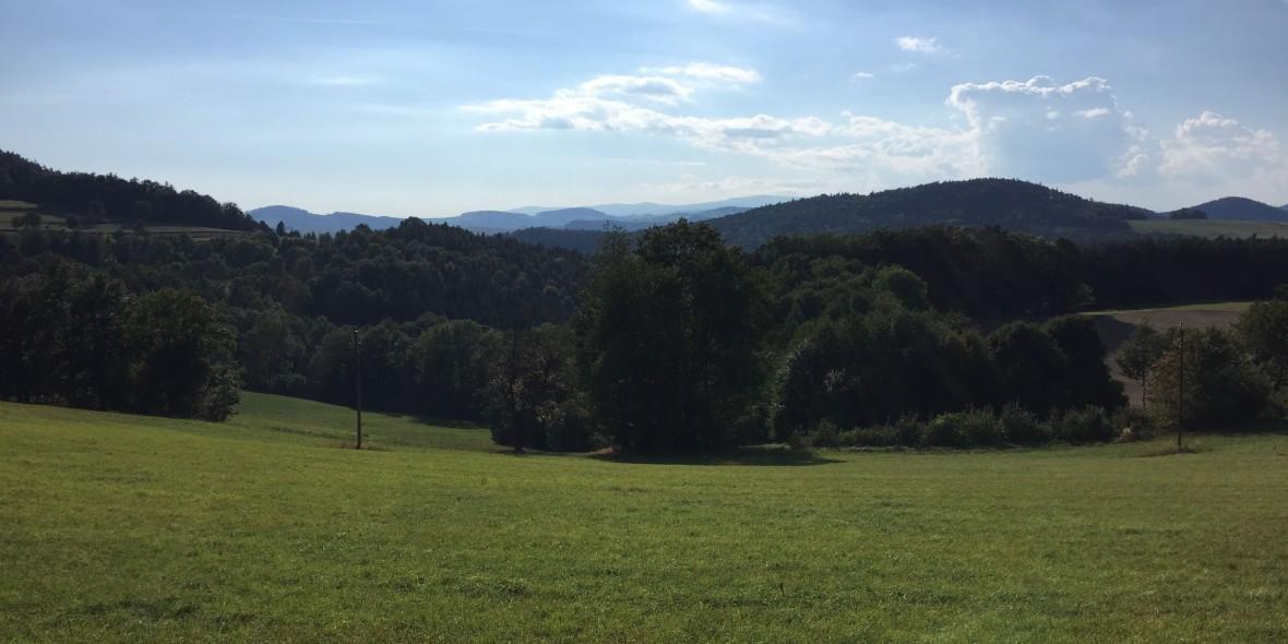 Bucklige Welt, Niederösterreich, Burgenland, Bucklige Welt, Berge, Natur, LAndschaft, Rennradblog, geradeaus